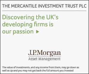 Read more about The Mercantile Investment Trust plc